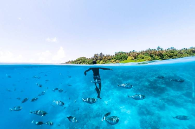 Dhivehi Insurance: Tailor-made products for the tourism sector