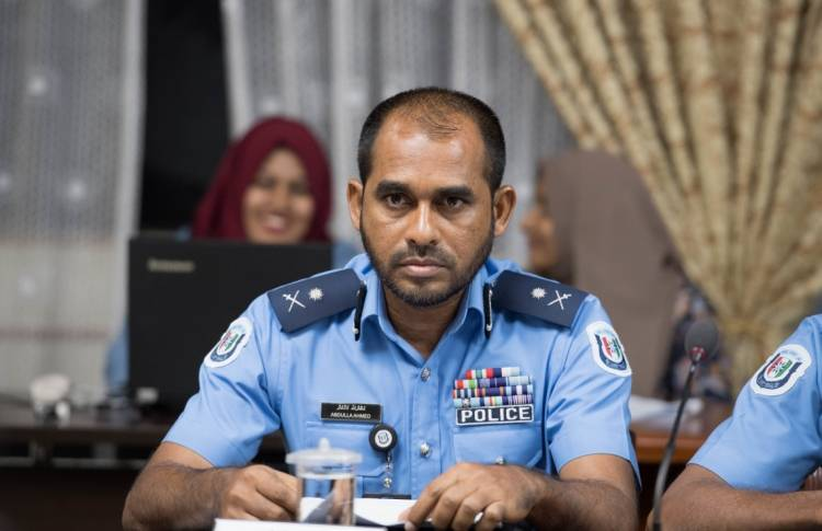 Actions taken to curb brutality: police