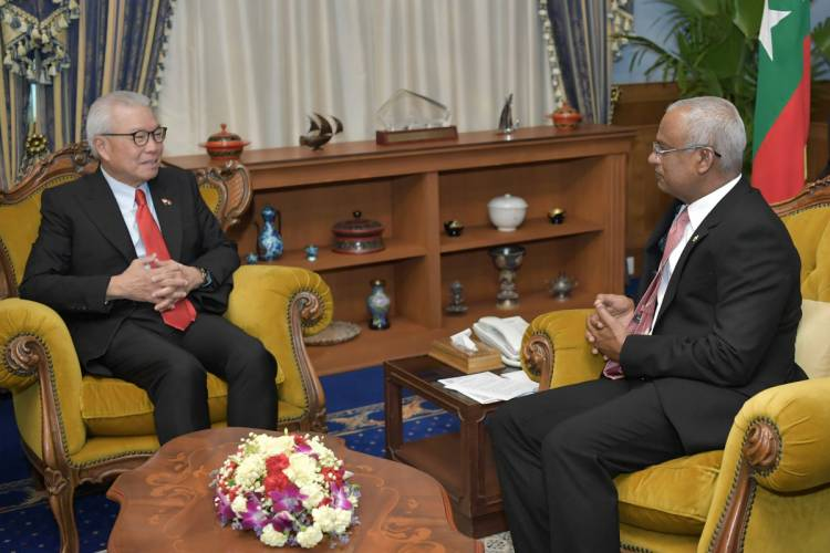 Ambassador of Singapore pays farewell call on President
