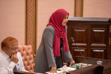 Minister Nahula at parliament: speaks on parking violation stickers, new airports and prev. administration
